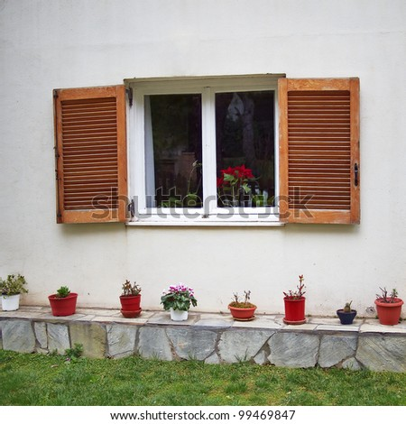 window and flowerpots, Athens Greece