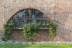 window and wall gardening in a park located inside Prague Castle