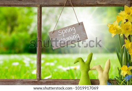 Window, Green Meadow, Spring Cleaning #1019917069