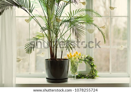 Window sill, french window with decor and flowers, white interior and plants on the sill. #1078255724