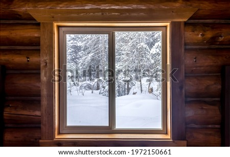 Window to the winter forest. View from window at winter snowy forest. Winter window view