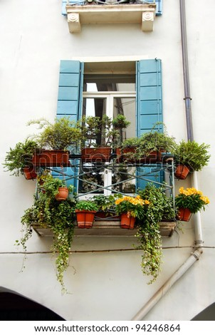 window with flowerpots