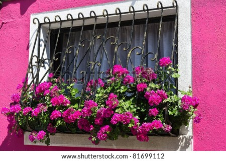 Window with Flowers, Burano, Italy
