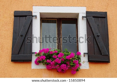 Window with flowers on a window sill