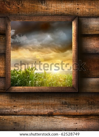 Window with pine wood textured background