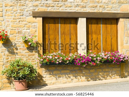 Windows with flower box in France