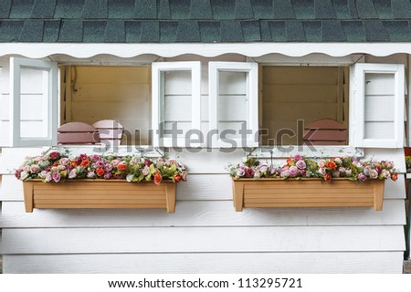 windows with flowers in hanging flower pots