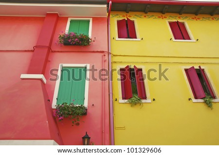 Windows with windowsill flower on the facade of a yellow building