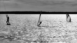 Windsurfing and kitesurfing athletes on the lake, black and white photo.