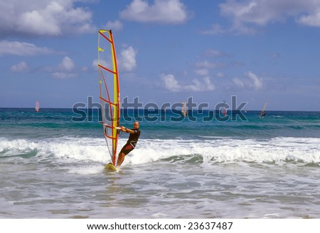 Windsurfing on tropical island in summer hot day