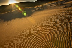 Windswept ripples on sand dunes in California's Mojave Desert