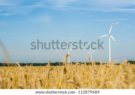 Windturbines in the summer time.