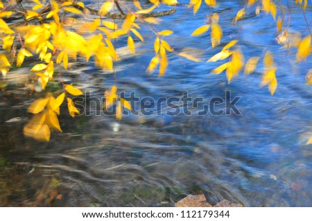 windy autumn leaves on river background