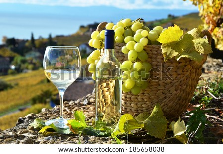 Wine and grapes.Lavaux region, Switzerland