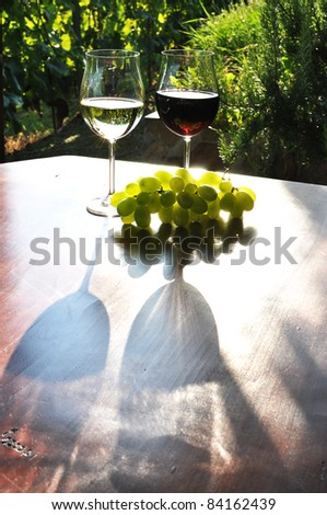 Wine and grapes. Lavaux region, Switzerland