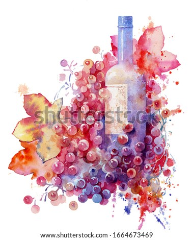 wine and grapes, red wine in a bottle on a white background, watercolor illustration.