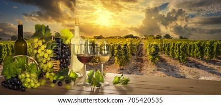 Wine at sunset, vineyard landscape  #705420535