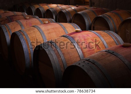 Wine barrels in an aging cellar of Ribera del Duero, Spain