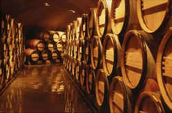 Wine barrels in cellar. Cavernous wine cellar with stacked oak barrels for maturing red wine.