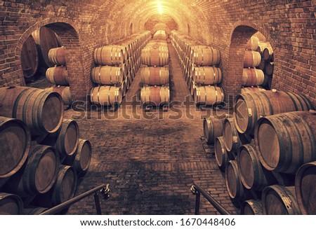Wine barrels in wine-vaults in order  Imagine de stoc ©