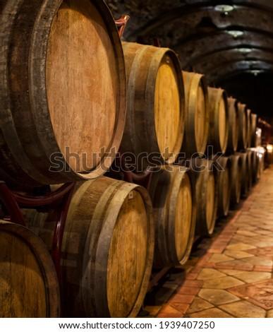 Wine barrels in wine-vaults in order Сток-фото ©