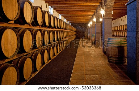 Wine barrels stacked in the cellar