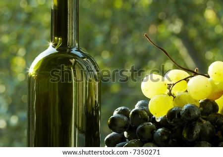 Wine bootle and grape