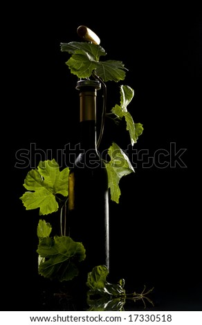 Wine bottles and leafs