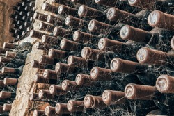 Wine bottles covered with spider web stacked up in old wine cellar close-up background. Underground wine cellars