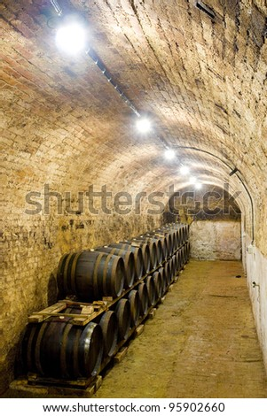 wine cellar, Czech Republic