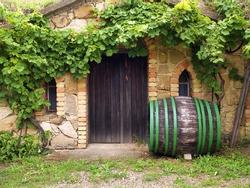 wine cellar on Morava, Czech