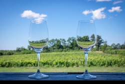 Wine classes a wood bar overlooking a prince Edward county vineyard in the middle of summer