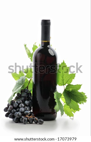 Wine composition: vine and bottle of wine