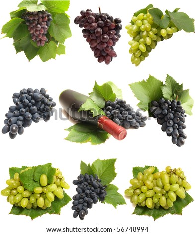 Wine from the best grapes