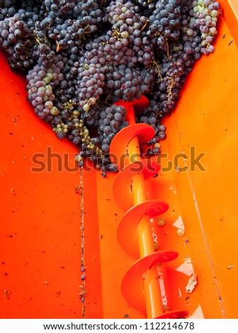 wine grape machine centrifuge with wine grape - stock photo