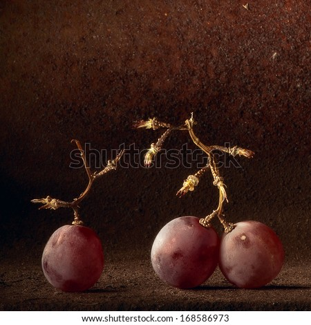 Wine grapes light painting. Abstract fruit still life concept for wine tasting or harvest vineyard