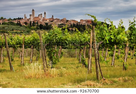 Wine in San Gimignano Medieval Village, Italy, Europe