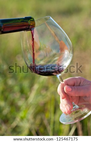 Wine pouring from bottle, outdoor picnic