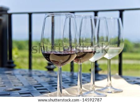 Wine Tasting by the Vineyard