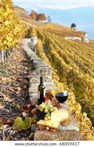 Wineglass and a bottle on the terrace vineyard in Lavaux region, Switzerland