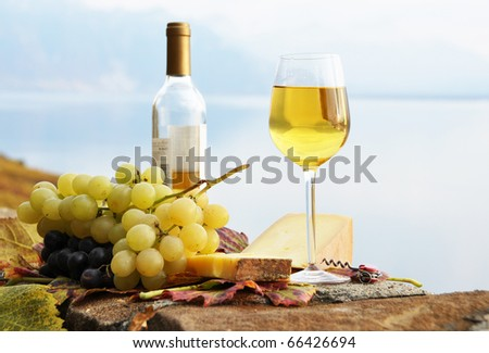 Wineglass, cheese and grapes on the terrace of vineyard in Lavaux region, Switzerland