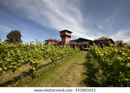 Winery - scenic view of unindentified winery and vineyard