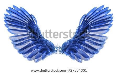 wing on black blackground Foto stock ©