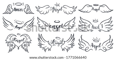 Wings hand drawn lettering. Doodle elegant angel wings phrases, sketched flight feather, winged angel wings and lettering  illustration set. Sketched lettering, angelic tattoo contour