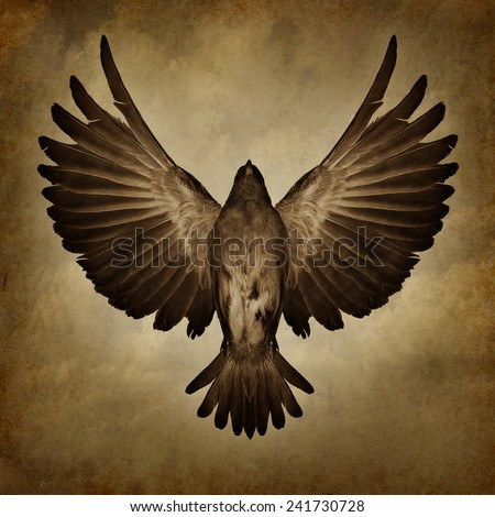 Wings of freedom on a grunge texture background as a breaking free and spirituality faith symbol as a bird with open spread feathers flying upward to success