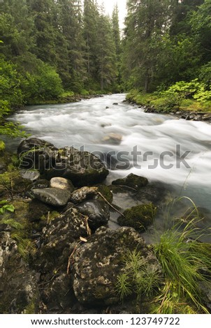 Winner Creek in the Chugach National Forest near Girdwood, Alaska
