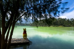 Winnie the Pooh in telaga warna, Warna lake dieng central java