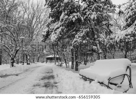 Winter #656159305