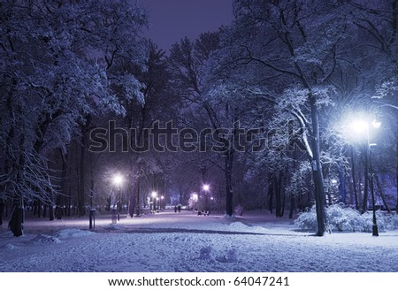 Winter alley in park and shining lanterns. Blue tone. Night shot.