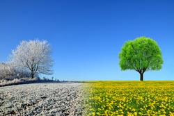 Winter and spring landscape with blue sky. Concept of change season.